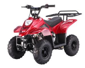 ATV110-B1 Boulder Burgundy