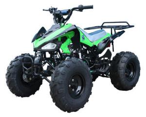 ATV110 Cheetah Green