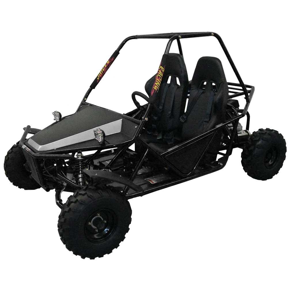 Go Karts Atlanta Ga >> ATV, Wholesale, Dealer, Tomahawk Motorsports, ATVs, Ga ...