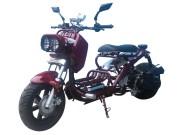 Cruiser50 Burgundy